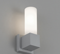 Artemide Dupla Outdoor Wall Lamp