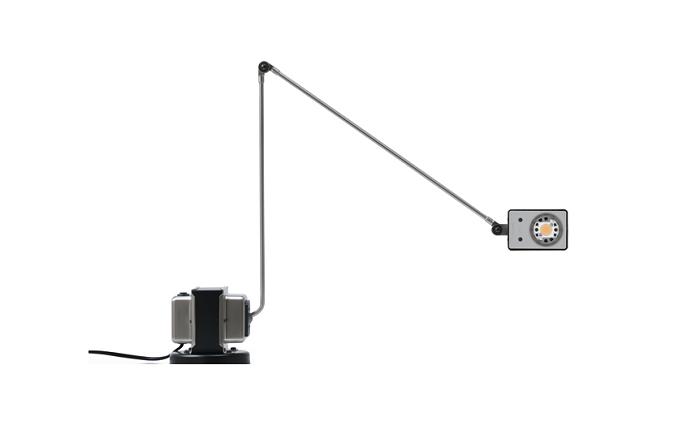 Lumina Daphine LED Lamp : surrounding.com