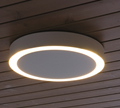 Amigo Ceiling Wall Lamp