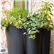 The Vases Outdoor Pot