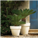Bordato Liscio Outdoor Planters