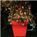 Bordato Liscio Planters Illuminated